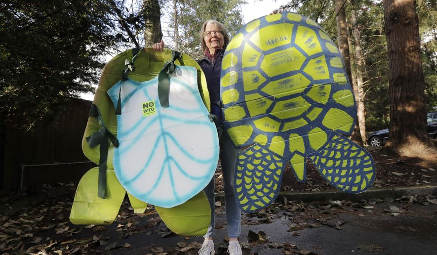 In this photo taken Monday, Nov. 25, 2019, Lisa Wathne holds original sea turtle costumes, like the one she wore 20 years earlier that were made for protesters at the World Trade Organization (WTO) demonstrations in Seattle, in Lake Forest Park, Wash. Wathne and other demonstrators wore the cardboard turtle shells to protest WTO policies, including one interpreted by protesters as disregarding the plight of turtles killed by shrimp nets. A wide array of issues brought tens of thousands of protesters to Seattle 20 years ago Saturday, with one unifying theme: concern that the World Trade Organization, a then-little-known body charged with regulating international trade, threatened them all. (AP Photo/Elaine Thompson)