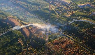FILE - In this Nov. 1, 2016 file photo, a fog of smoke covers the trees near an explosion of a Colonial Pipeline in Helena, Ala. A federal investigation released Thursday, Dec. 12, 2019, cited inadequate work by an excavation company as the probable cause of a pipeline explosion that killed two people and slowed the flow of fuel to the Eastern Seaboard in 2016. Workers unearthing a Colonial Pipeline Co. pipeline that was carrying thousands of gallons of gasoline near Birmingham failed to plan, coordinate and communicate during the job, according to a report by the National Transportation Safety Board. (AP Photo/Brynn Anderson, File)