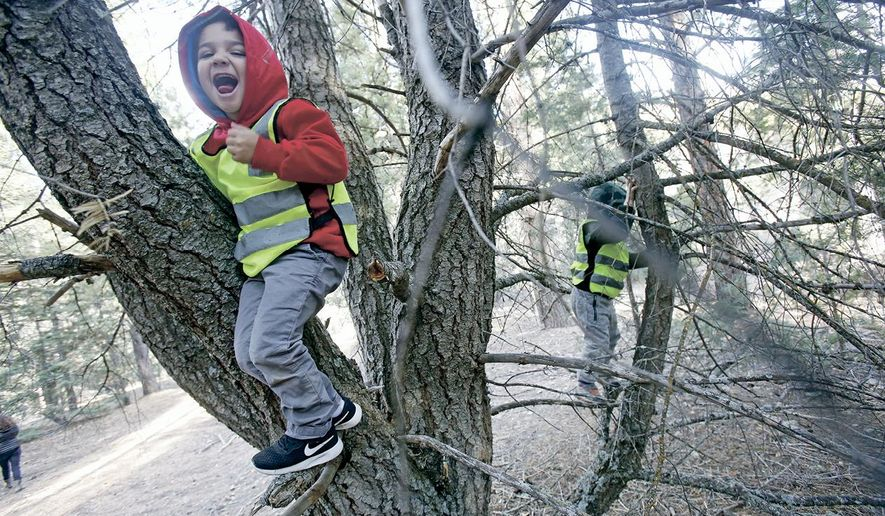 In this Nov. 2019 photo, Kai Newell, 4, climbs a tree while on a trip with the New Mexico School for the Deaf to the forest in Santa Fe, N.M. (Luis Sanchez Saturno/Santa Fe New Mexican via AP)