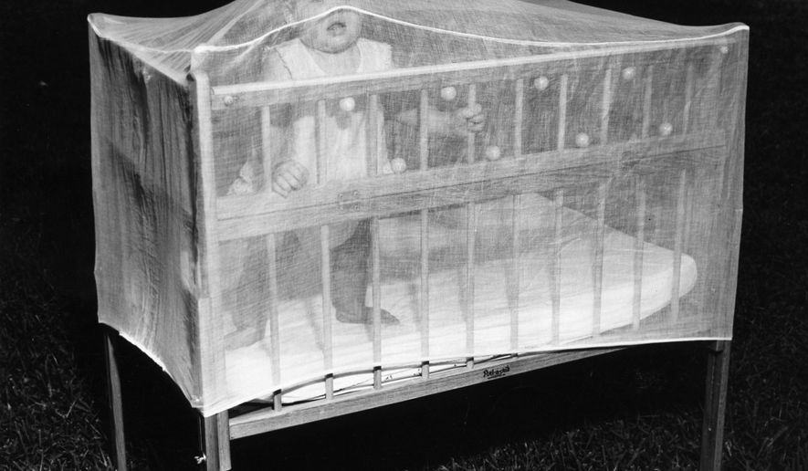 In this May 23, 1956 photo, a net is placed over a baby's crib to protect them against mosquitoes in St. Petersburg, Fla. Dengue and yellow fever epidemics slammed Florida in the 1700s. According to Gordon Patterson, a professor at the Florida Institute of Technology and an expert on the history of mosquitoes in Florida, in the last 20 years of the century, disease-harboring mosquitoes killed more human beings than any other animal on this planet.  (George Travant/Tampa Bay Times via AP)