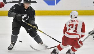 Tampa Bay Lightning defenseman Ryan McDonagh (27) and Detroit Red Wings center Dylan Larkin (71) battle for the puck during the second period of an NHL hockey game Sunday, Dec. 29, 2019, in Tampa, Fla. (AP Photo/Steve Nesius)