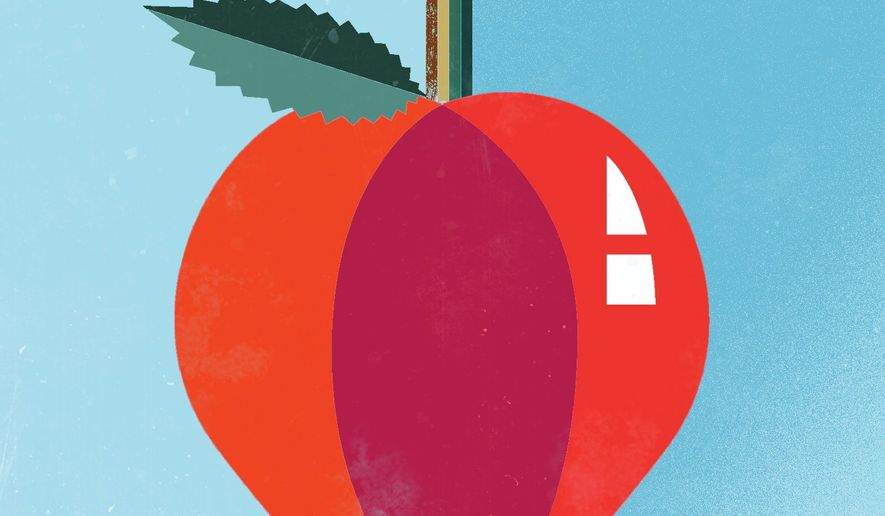 Illustration  on the future of U.S. education by Linas Garsys/The Washington Times