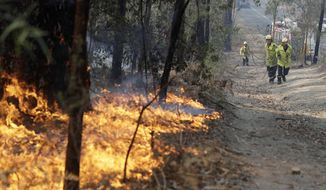 Firefighters drag a hose to battle a fire near Bendalong, Australia, Friday, Jan. 3, 2020. Navy ships plucked hundreds of people from beaches and tens of thousands were urged to flee before hot, windy weather worsens Australia's devastating wildfires. (AP Photo/Rick Rycroft)
