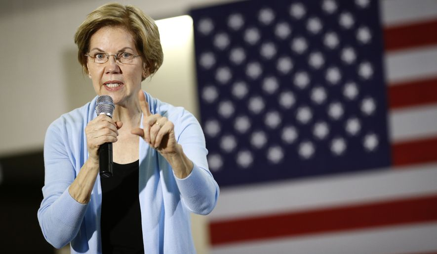 Democratic presidential candidate Sen. Elizabeth Warren, D-Mass., speaks during a campaign event, Saturday, Jan. 11, 2020, in Mason City, Iowa. (AP Photo/Patrick Semansky)
