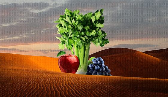 Oasis in the Food Desert Illustration by Greg Groesch/The Washington Times