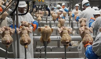 In this Dec. 12, 2019, file photo workers process chickens at the Lincoln Premium Poultry plant, Costco Wholesale's dedicated poultry supplier, in Fremont, Neb. (AP Photo/Nati Harnik, File) **FILE**