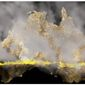 Illustration on the Australian wildfires by Alexander Hunter/The Washington Times