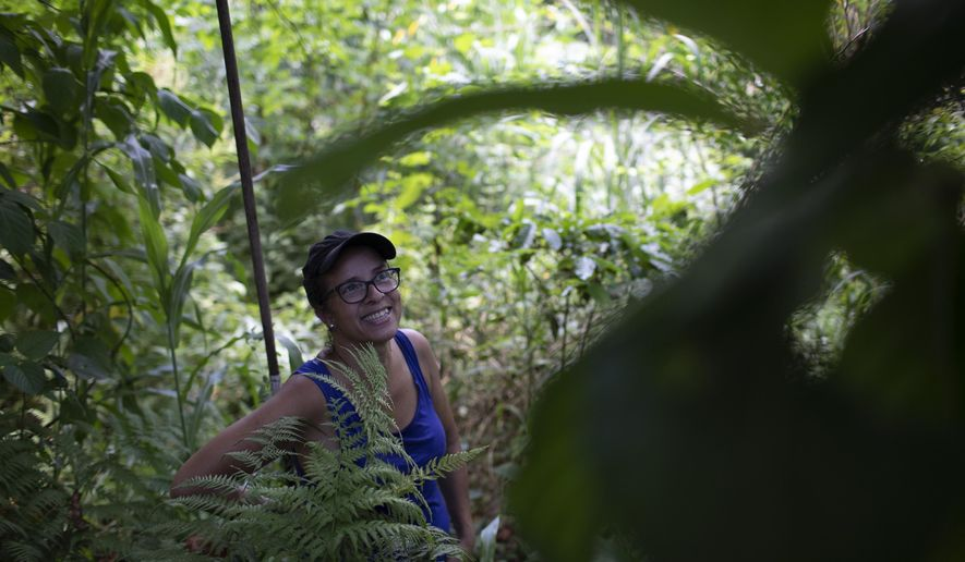 In this Jan. 6, 2020 photo, activist Ale Roque smiles as she sees a tree bearing fruit at her home in Rio's first favela, Morro da Providencia, Rio de Janeiro, Brazil. Roque's project forms part of a recent wave of green projects in Rio, a city known for its jungle, but much of which is actually large expanses of concrete and brick with ever-hotter temperatures during the summer months. (AP Photo/Silvia Izquierdo)