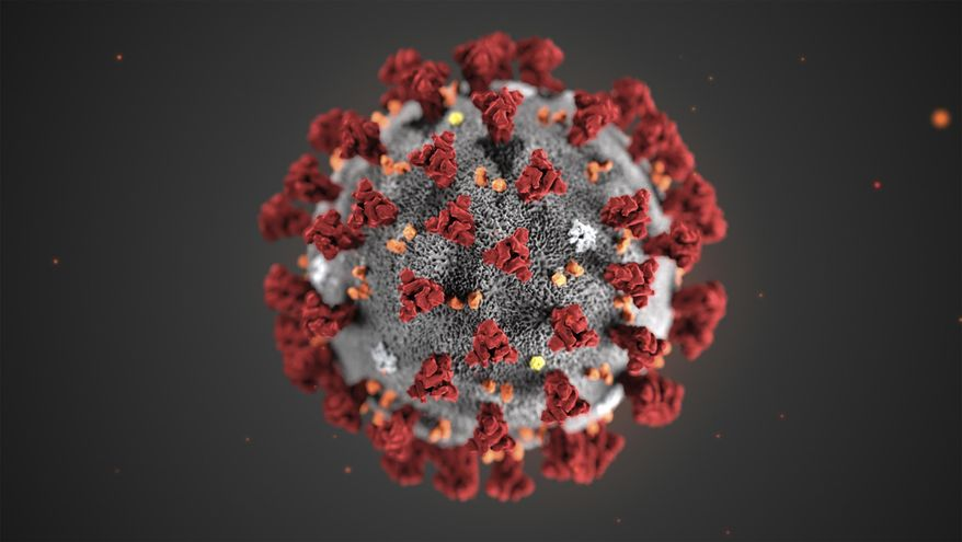 This illustration provided by the Centers for Disease Control and Prevention (CDC) in January 2020 shows the 2019 Novel Coronavirus (2019-nCoV). (CDC via AP, File)