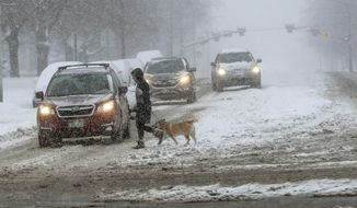 A dog walker crosses the road, Monday, Feb. 3, 2020, in Salt Lake City, after a winter storm dropped up to 11 inches of snow in parts of the valley. The storm is expected to continue through the day and public safety officials are encouraging people to stay off the roads. (Steve Griffin/The Deseret News via AP)