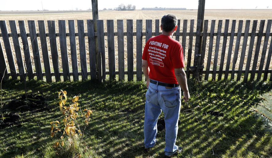 In this Oct. 29, 2018, photo, Jeff Schwartzkopf, of Rudd, Iowa, looks at the concentrated animal feeding operation, or CAFO, built near his home in Rudd, Iowa. Jeff and Gail Schwartzkopf say their lives changed drastically after a hog operation was built a quarter-mile from their home in northern Iowa. (AP Photo/Charlie Neibergall)