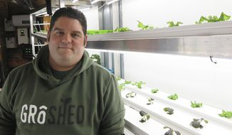 GroShed technical engineer Jake Stern stands next to one of the company's sheds at the Home and Remodeling Show in Minneapolis on Jan. 31, 2020. Stern said plants grow fast under special LED lights, which also keep the inside of the structure warm. (Martin Moylan/Minnesota Public Radio via AP)