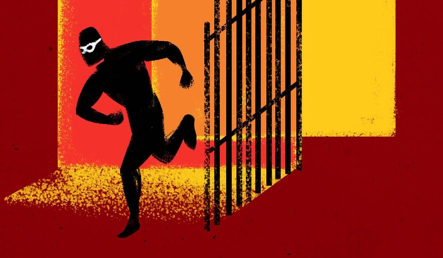 Immigration Sanctuary Policies Illustration by Linas Garsys/The Washington Times
