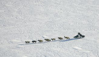 FILE - In this March 10, 2007 file photo Iditarod Trail Sled Dog Race front runner, four-time Iditarod champion Jeff King of Denali Park, Alaska, drives his dog team through the wind on the Yukon River near the Eagle Island, Alaska. When 57 mushers line up Sunday, March 8, 2020 for the official start of the Iditarod Trail Sled Dog Race, it will be the second-smallest field in the past two decades.  (AP Photo/Al Grillo,File)