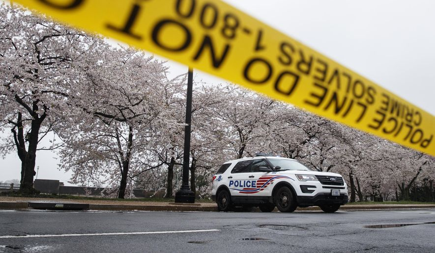 A Washington D.C. Metropolitan Police vehicle is parked on the other side of a tape police line along the Tidal Basin as cherry blossoms cover the trees, in Washington, Monday, March 23, 2020. (AP Photo/Carolyn Kaster)  **FILE**