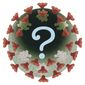 Illustration on question on the coronavirus by Alexander Hunter/The Washington Times