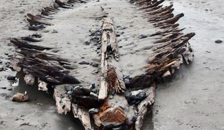 FILE - In this March 5, 2018, file photo, a person photographs a shipwreck's remains after a nor'easter that battered the New England coast made it visible on Short Sands Beach in York, Maine. Researcher Stefan Claesson said in April 2020, that he believes the vessel is the Defiance, a sloop that washed ashore during a violent storm in 1769. The shipwreck, last exposed by the 2018 storm, reappears every few years due to natural ocean movements. (Deb Cram/Portsmouth Herald via AP, File)