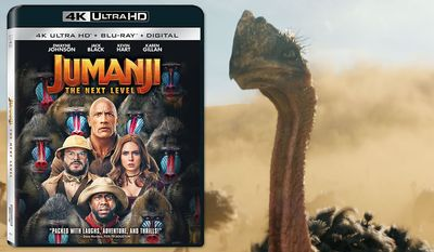 """""""Jumanji: The Next Level,"""" now available on 4K Ultra HD from Sony Pictures Home Entertainment."""
