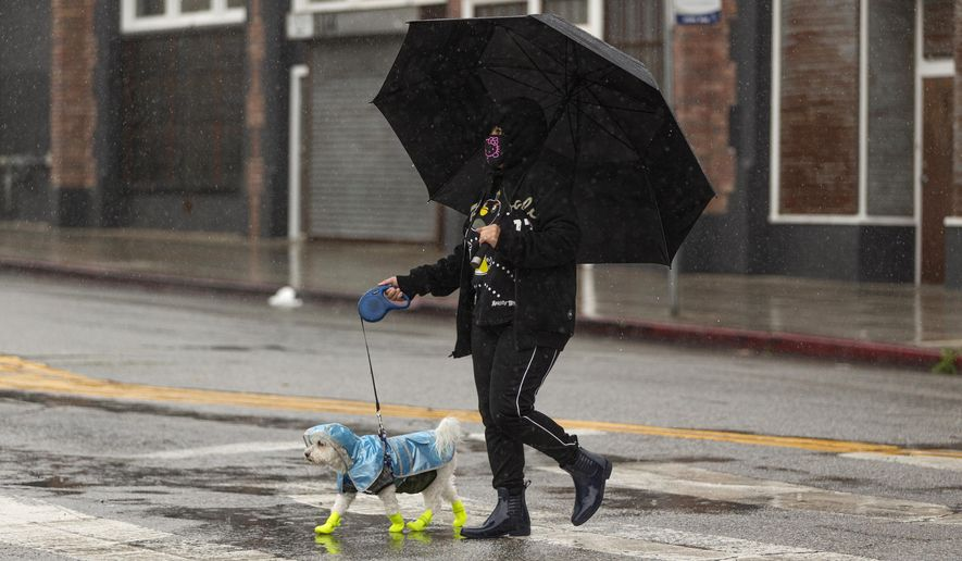 A pedestrian wearing a face mask walks her dog protected from the rain in Los Angeles Thursday, April 9, 2020. Rain and snow continues to fall on parts of California as a wet spring pushes back against dryness that spread over three-quarters of the state during the dry winter. The latest storm entered the state from the north last weekend and moved down the coast. It's still drawing bands of rain into Southern California on Thursday and producing remarkable amounts of snow at higher elevations. For downtown Los Angeles, the rainfall has erased a seasonal deficit. (AP Photo/Damian Dovarganes)