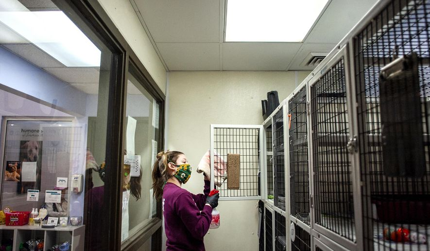 Pandemic Sparks Interest In Pet Adoptions Washington Times