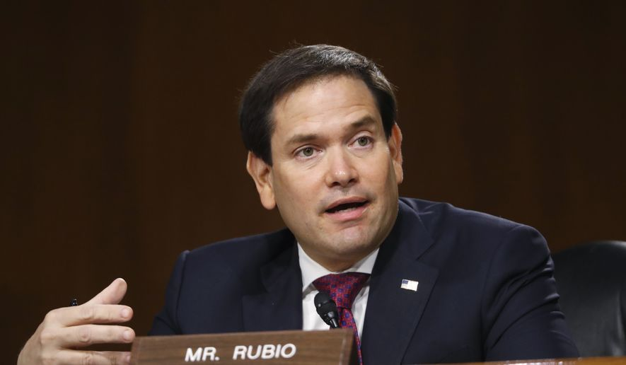 Sen. Marco Rubio, R-Fla., speaks during a Senate Intelligence Committee nomination hearing for Rep. John Ratcliffe, R-Texas, on Capitol Hill in Washington, Tuesday, May. 5, 2020. (AP Photo/Andrew Harnik, Pool) ** FILE **