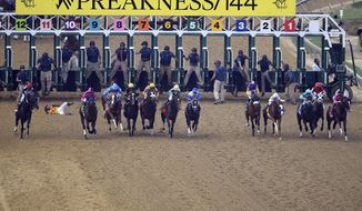 In this May 18, 2019, file photo, jockey John Velazquez tumbles to the track after falling off Bodexpress (9) as the field breaks from the starting gate in the 144th Preakness Stakes horse race at Pimlico race course in Baltimore. War of Will, far right, ridden Tyler Gaffalione won the race. A person with knowledge of negotiations tells The Associated Press the Maryland Jockey Club and NBC Sports have set aside three possible dates for the running of the next Preakness. (AP Photo/Nick Wass) ** FILE **