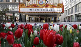 Tulip boom in downtown Chicago, Thursday, May 7, 2020. Summer heat waves could be deadlier because of COVID-19, health officials warn. (AP Photo/Nam Y. Huh)
