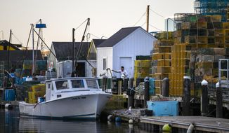 A lobsterman tosses a buoy onto his boat before heading out to set traps for the upcoming summer season, Thursday, May 14, 2020, in Portland, Maine. The lobster fishing industry has been hurt by the shrinking demand for its product bought on by the global coronavirus pandemic. (AP Photo/Robert F. Bukaty)