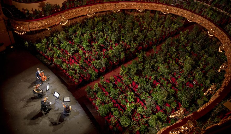 "Musicians rehearse at the Gran Teatre del Liceu in Barcelona, Spain, Monday, June 22, 2020. The Gran Teatre del Liceu reopens its doors, in which the 2,292 seats of the auditorium will be occupied on this occasion by plants. It will be on 22 June, broadcast live online, when the UceLi Quartet string quartet performs Puccini's ""Crisantemi"" for this verdant public, brought in from local nurseries. (AP Photo/Emilio Morenatti)"