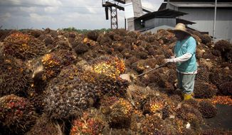 FILE - In this Wednesday, Nov. 4, 2009, file photo, a worker works with palm oil fruits at a collection center in Dangkil, outside Kuala Lumpur, Malaysia. On Tuesday, July 7, 2020, anti-trafficking organization Liberty Shared said it filed a petition to bantheimportation of palm oil produced by Malaysia-based Sime Darby Berhad, one of the world's largest suppliers, saying it found evidence of child and forced labor on plantations that supply American food and cosmetics companies. (AP Photo/Vincent Thian)