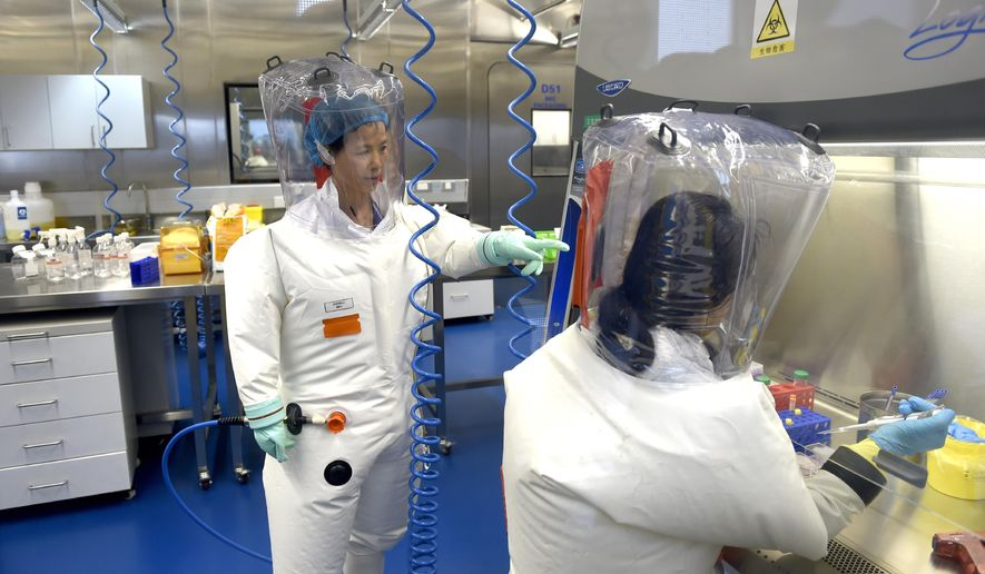In this Thursday, Feb. 23, 2017, file photo, Shi Zhengli works with other researchers in a lab at the Wuhan Institute of Virology in Wuhan in central China's Hubei province. (Chinatopix via AP) ** FILE **