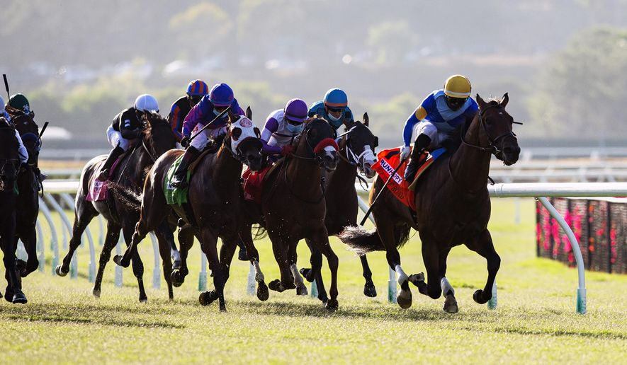 In this image provided by Benoit Photo, Hit the Road, with Umberto Rispoli aboard, wins the $100,000 Runhappy Oceanside Stakes horse race Friday, July 10, 2020, at Del Mar Thoroughbred Club in Del Mar, Calif. (Benoit Photo via AP)