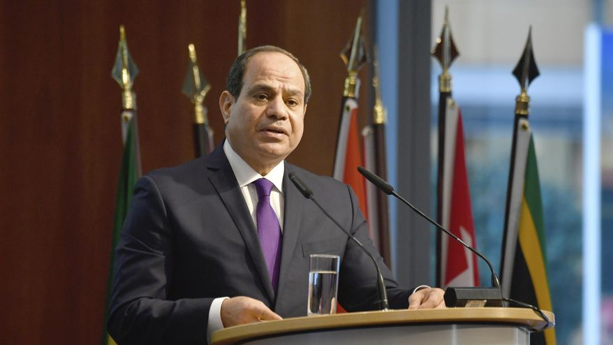 "Egypt's President Abdel Fattah al-Sisi speaks at the ""G20 Investment Summit."" (John MacDougall/Pool via AP, File)"