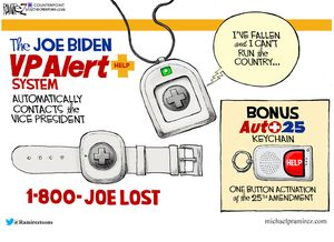 The Joe Biden VP Alert System