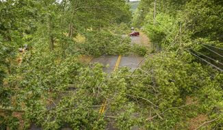 Southington, Ct. - 08/04/2020 - Trees line the street after high winds from Tropical Storm Isaias on Tuesday, Aug. 4, 2020 in Southington, Conn.  (Mark Mirko/Hartford Courant via AP)