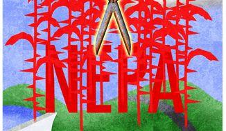 Illustration on NEPA reform by Alexander Hunter/The Washington Times