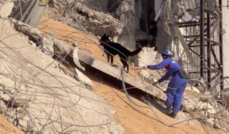 In this photo taken from footage provided by the Russian Emergency Situations Ministry press service, a Russian Emergency Situations employee works with his sniffer dog on the site of the explosion in the port of Beirut, Lebanon, on Thursday, Aug. 6, 2020. Russia's emergency officials say the country sent five planeloads of aid to Beirut after an explosion in the Lebanese capital's port killed at least 100 people and injured thousands on Tuesday. (AP Photo/Ministry of Emergency Situations press service via AP)