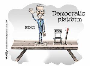 Democratic platform