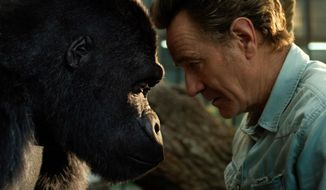 """This image released by Disney Plus shows Bryan Cranston, right, with a gorilla named Ivan, voiced by Sam Rockwell, in a scene from """"The One and Only Ivan."""" (Disney Plus via AP)"""
