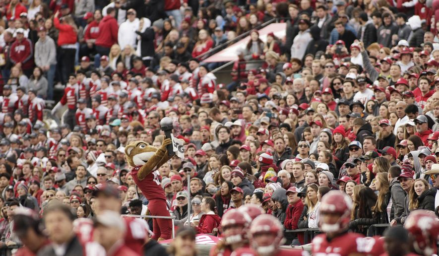 In this Nov. 16, 2019, photo, a packed crowd looks on as Washington State mascot Butch T. Cougar performs during an NCAA college football game between Washington State and Stanford in Pullman, Wash. The athletes weren't the only ones impacted when Washington State's fall football season was canceled by the coronavirus pandemic. Merchants in tiny Pullman, who depend on big football crowds, say they are losing a major chunk of their annual income. Pullman, the most remote outpost in the PAC-12, has only 34,000 residents and many businesses in town depend on visitors attracted by football games, graduation and other special events. (AP Photo/Young Kwak)