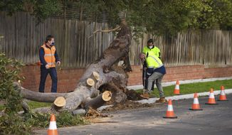 Men work on removing a fallen tree, Friday, Aug. 28, 2020, which struck and killed a 4-year-old boy in Melbourne, Australia. Three people were killed by falling trees and 50,000 homes were left without power after a wild storm Thursday. (James Ross/AAP Image via AP)