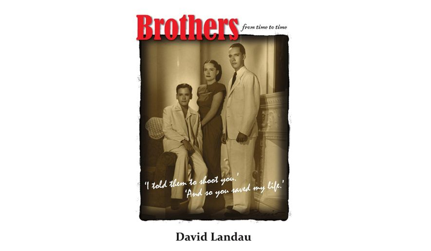 Brothers: From Time to Time by David Landau (book cover)