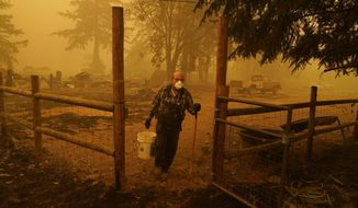 George Coble carries a bucket of water to put out a tree still smoldering on his property destroyed by a wildfire Saturday, Sept. 12, 2020, in Mill City, Ore. (AP Photo/John Locher)