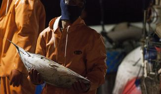 FILE - In this March 23, 2016 file photo, a foreign worker unloads fish from a U.S. fishing vessel at Pier 38 in Honolulu. On Friday, Sept. 18, 2020 the Hawaii Supreme Court heard arguments on the legality of issuing licenses to foreign workers in Hawaii's longline commercial fishing fleet, which for years has been under scrutiny after an Associated Press investigation revealed claims of human trafficking and questionable labor practices.(AP Photo/Caleb Jones, File)