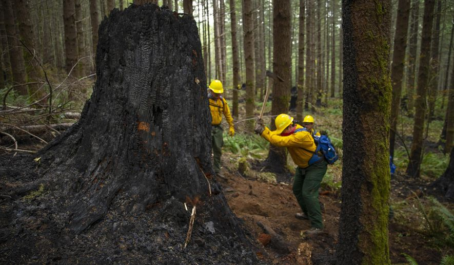 A fire crew from the Oregon Air National Guard works to dig out hot spots on the fire lines of the Holiday Farm Fire, east of Springfield, Ore., Monday Sept. 21, 2020. (Chris Pietsch/The Register-Guard via AP)