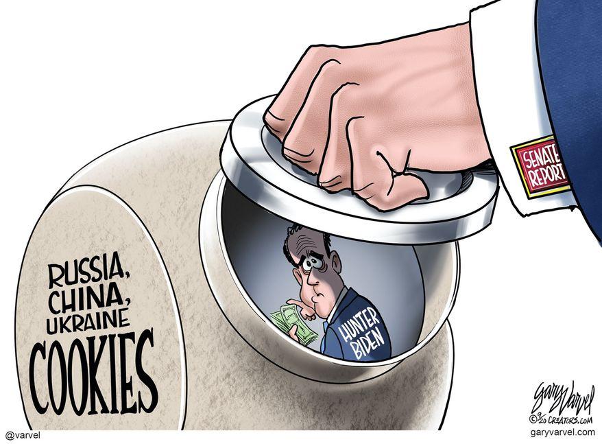 Political Cartoons Congress In Action Hunter Biden Washington Times