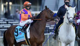 Kentucky Derby winner Authentic with John Velazquez aboard prepare to run the Preakness Stakes horse race at Pimlico Race Course, Saturday, Oct. 3, 2020, in Baltimore. (AP Photo/Steve Helber)