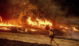In this Oct. 1, 2020 file photo a firefighter passes flames while battling the Glass Fire in a Calistoga, Calif., vineyard. With months still to go in California's fire season, the state has already shattered records for the amount of land scorched in a single year, more than 4 million acres to date, with one blaze alone surpassing the 1 million-acre mark. Five of the 10 largest wildfires in state history have occurred since August. (AP Photo/Noah Berger, File)  **FILE**
