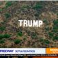 A giant 'TRUMP' sign appears off the 405 Freeway in Los Angeles, California, Oct. 6, 2020. (Image: KTLA-5 Los Angeles screenshot)