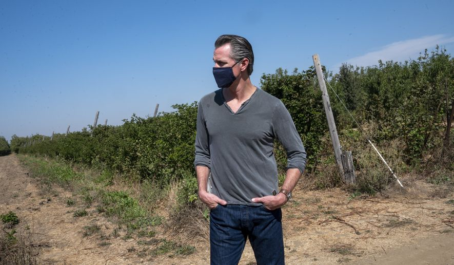 California Gov. Gavin Newsom tours Sierra Orchards walnut farm in Winters, Calif. in Solano County on Wednesday, Oct. 7, 2020. Newsom signed an executive order Wednesday to protect nearly a third of California's land and coastal waters in his latest effort to fight climate change that he has blamed for recent record-breaking wildfires. (Renée C. Byer/The Sacramento Bee via AP, Pool)